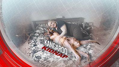 Kangaroo kidnapped