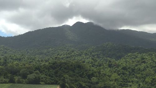 The scenic location towers over the nearby towns of Tully and Babinda, (9NEWS)