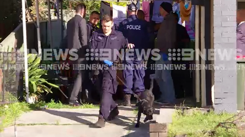 Several homes in the NSW Illawarra region have been raided by detectives, the dog squad and highway patrol officers in a large drug operation.