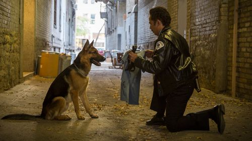 A scene from A Dog's Purpose. (AAP)
