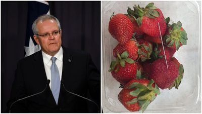 'Sabotaging our strawberries is sabotaging our farmers'