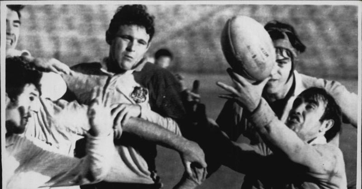 Former rugby star Dr Mick Barry drowns on Gold Coast – 9News