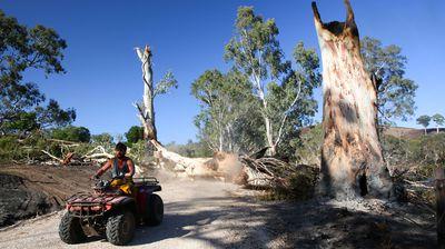 Farmer Sam Randell checks bushfire damage on his Gumeracha property.