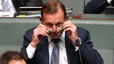 'Toxic egos' dominating parliament: Tony Abbott
