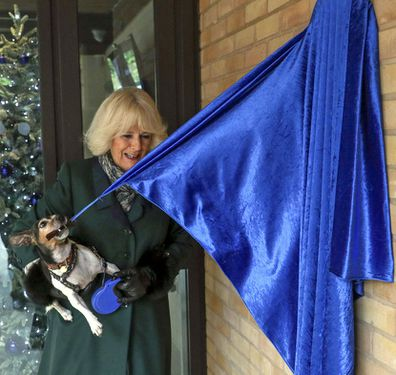 Camilla, Duchess of Cornwall with Beth, her jack-russell terrier, unveiling a plaque as they visit the Battersea Dogs and Cats Home to open the new kennels and thank the centre's staff and supporters on December 9, 2020 in Windsor, United Kingdom