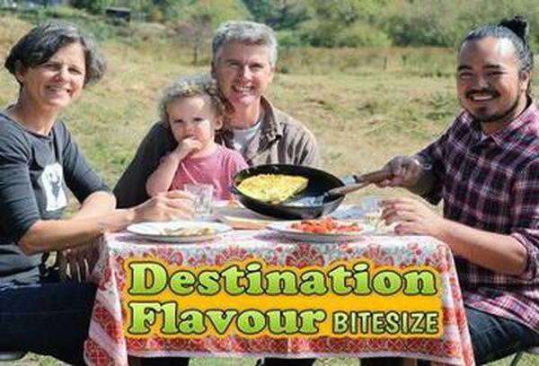 Destination Flavour Bitesize
