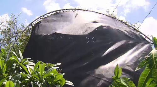 The storm sent a trampoline over a house and into a tree. (Image: 9NEWS)
