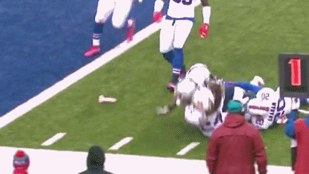 NFL fan throws sex toy on field