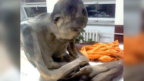 Buddhists claim mummified monk is 'not dead, just meditating'