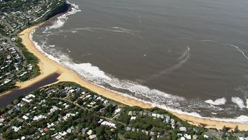 Polluted beaches NSW