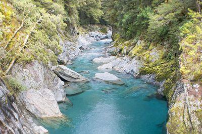 <strong>Blue Pools Walk,&nbsp;Mt Aspiring National Park</strong>