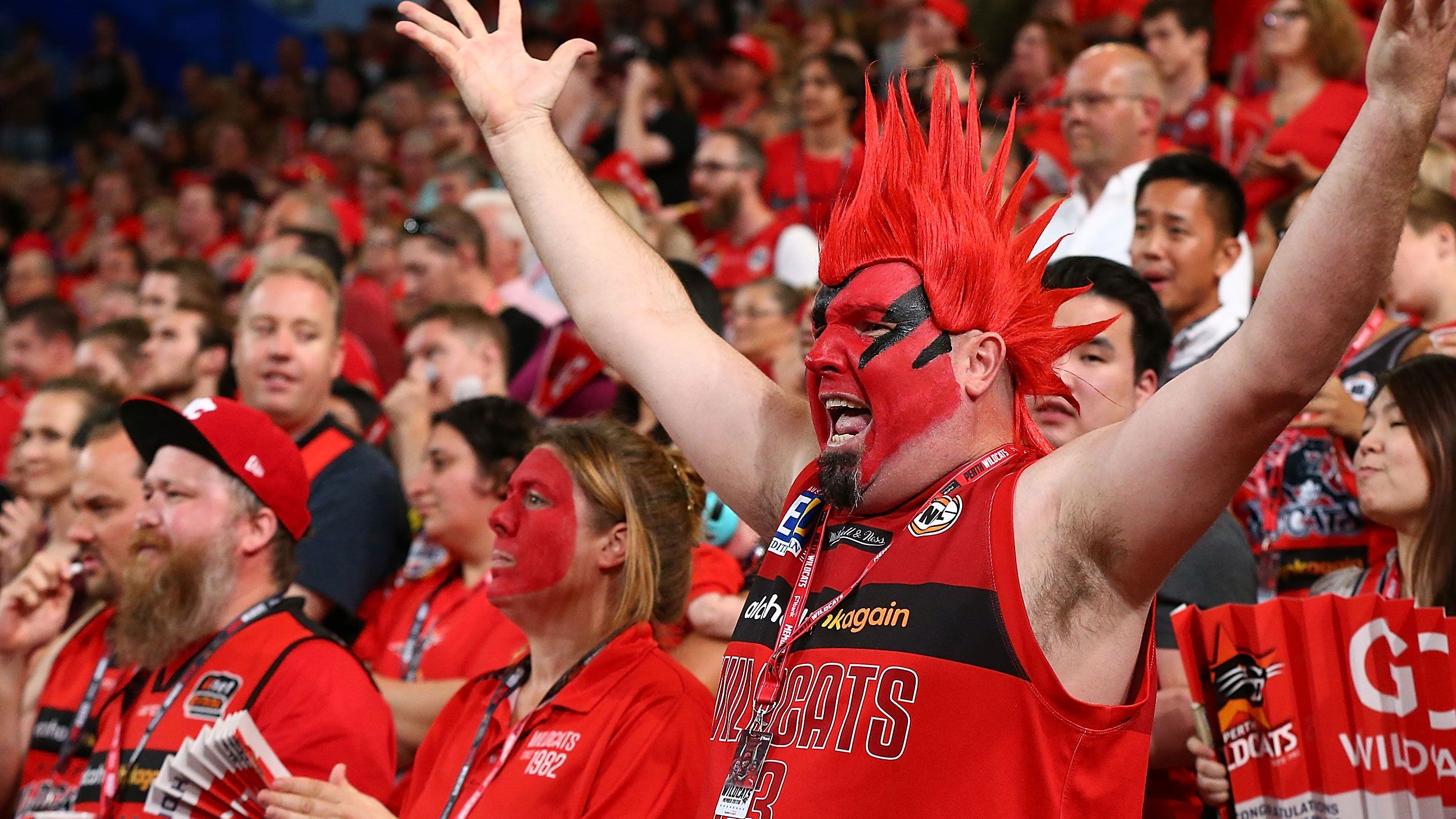 Perth Wildcats fandom is huge.