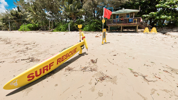 Swimmers and tourists alike were forced to abandon waters at Four Mile Beach at Port Douglas following the croc being spotted up against the protection nets.