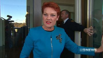 Pauline Hanson lashes out at reporters over leaked recordings probe