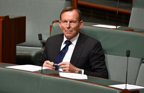 Former prime minister Tony Abbott in parliament this morning. (AAP)