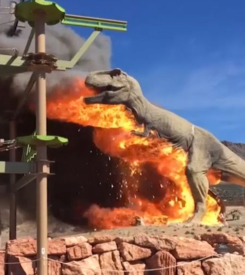 A 7-metre tall model Tyrannosaurus Rex was set alight earlier this week at a dinosaur-themed park in the United States. Picture: ZACH REYNOLDS/ROYAL GORGE DINOSAUR EXPERIENCE.