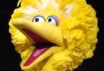 Daily Quiz: While first presumed imaginary, who is Big Bird's best friend?