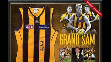 The Sam Mitchell Brownlow jersey was for sale on the AFL's online store.