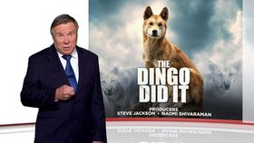 Ep 44 The dingo did it, What a Guy