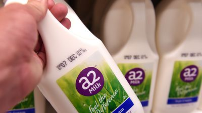 New dairy code to stop shock milk price changes