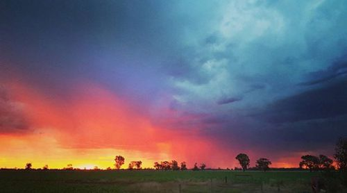 A storm front rolls in over Aspley in Victoria (Instagram/rachmillywilly)