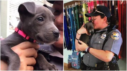 The pup is now safe and sound in the care of its new owner. (Daytona Police)