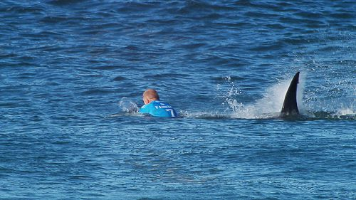 The shark approaches Fanning from behind. (AAP)