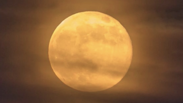 October's first full moon is the harvest moon on October 1, and the second full moon will occur on October 31. That's right: a full moon on Halloween.