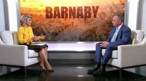 Former deputy prime minister Barnaby Joyce has sat down with Georgie Gardner to discuss his struggles with mental health. Picture: 9NEWS.