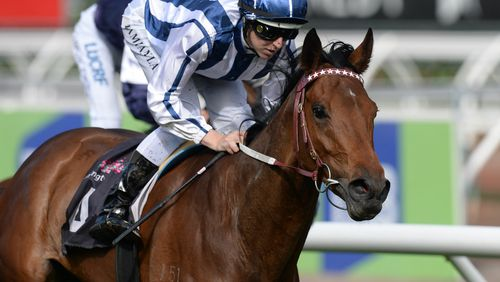 Amelie's Star is tipped to run second. (Image: AAP)