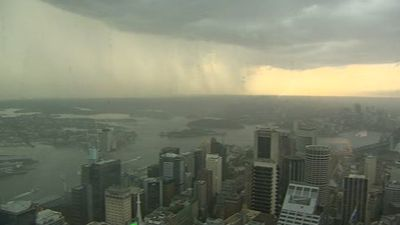 Sydney's CBD this afternoon. (9NEWS)