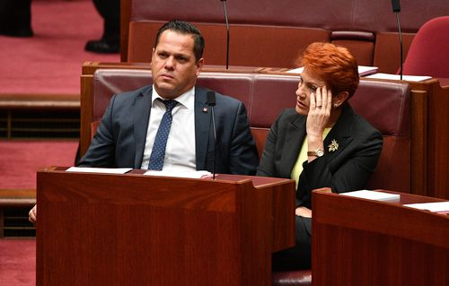 One Nation leader Pauline Hanson and her Senator Peter Georgiou will back the government's tax plan. Picture: AAP