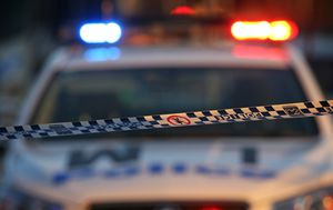 Girl, 1, killed in Sydney driveway