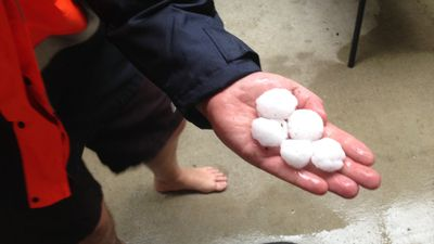 Large hail at Regents Park. (Supplied, David Dixon)
