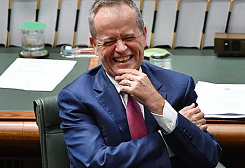 Bill Shorten will look to exploit the chaos engulfing the government. (AAP)