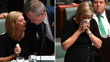 Lamb 'has case to answer' despite tears in parliament