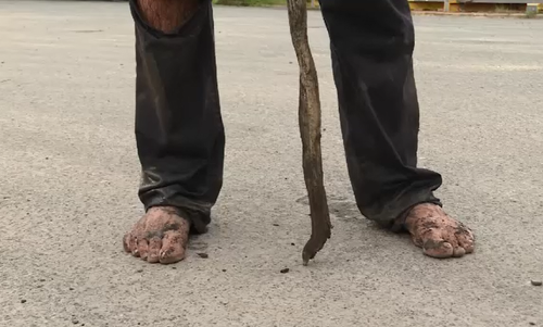 While he wasn't injured, his feet were a bit dirty. (9NEWS)