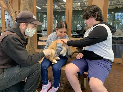 Giovanni and Caterina meet a baby dingo at the zoo.
