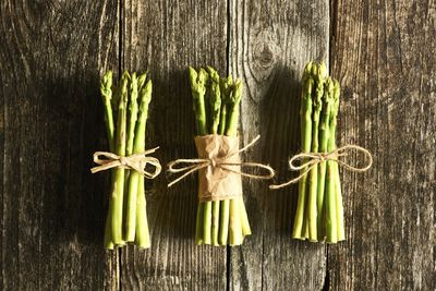 <strong>Asparagus</strong>