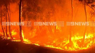 The fire started in Shannon National Park on Friday. (9NEWS)