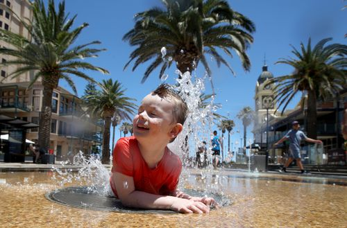 It was a day in the water in Adelaide, with temperatures reaching 41 degrees.
