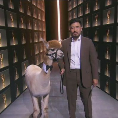 Randall Park and his alpaca at the Emmys.