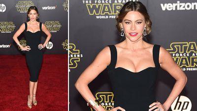 Modern Family star Sofia Vergara. (Getty)