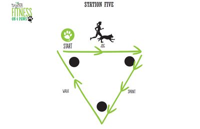 <strong>Station Five: Walk, Jog and Sprint (4 minutes)</strong>