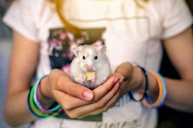 Girl holding a hamster.