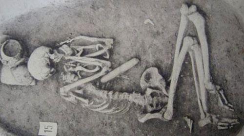 Ancient ancestors would out-do elite athletes