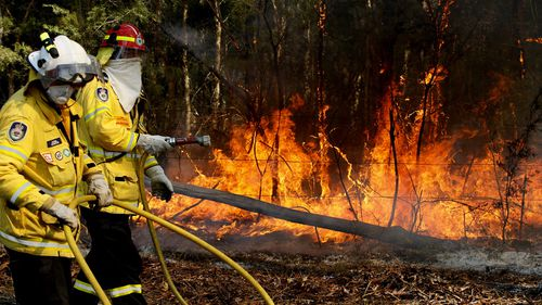 Almost 1200 firefighters are tackling large bushfires on the NSW mid-north coast among scores of blazes around the state. (AAP Image/Darren Pateman)
