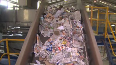 No more recycling: Council to send ALL rubbish to landfill