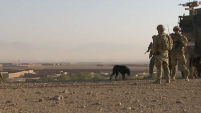 """<p>""""Life has been protected, and indeed saved, by the work, the skill, the courage, and indeed the devotion of these men and their dogs,"""" War Memorial director Brendan Nelson said last year.</p>"""