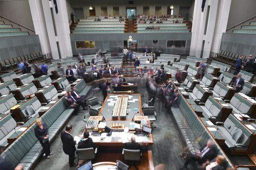 Members in the Lower House have until this morning to declare their citizenship status. (AAP)
